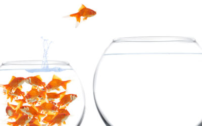 What to consider when you're 'thinking' of transitioning from employee to entrepreneur…..